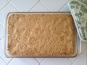 coconut bars - baked